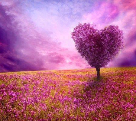 Despierta Corazón Letras Poesía