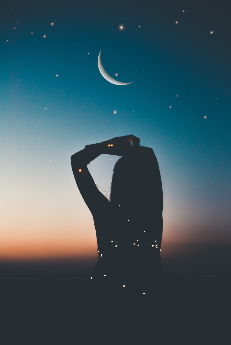 ∼ Nocturna ∼
