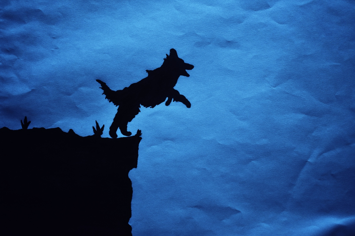 El perro que quería volar